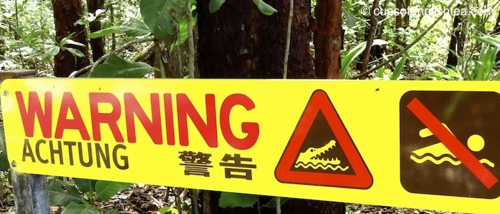 warning-crocodiles-cape-tribulation