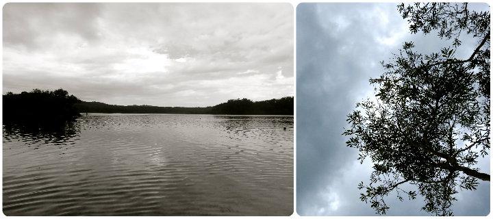 fraser-island-lake-mckenzie