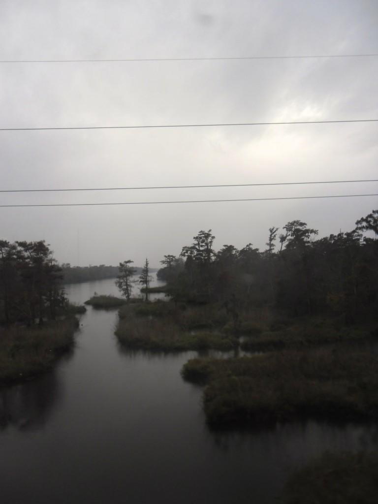 Louisiana Nola bayou