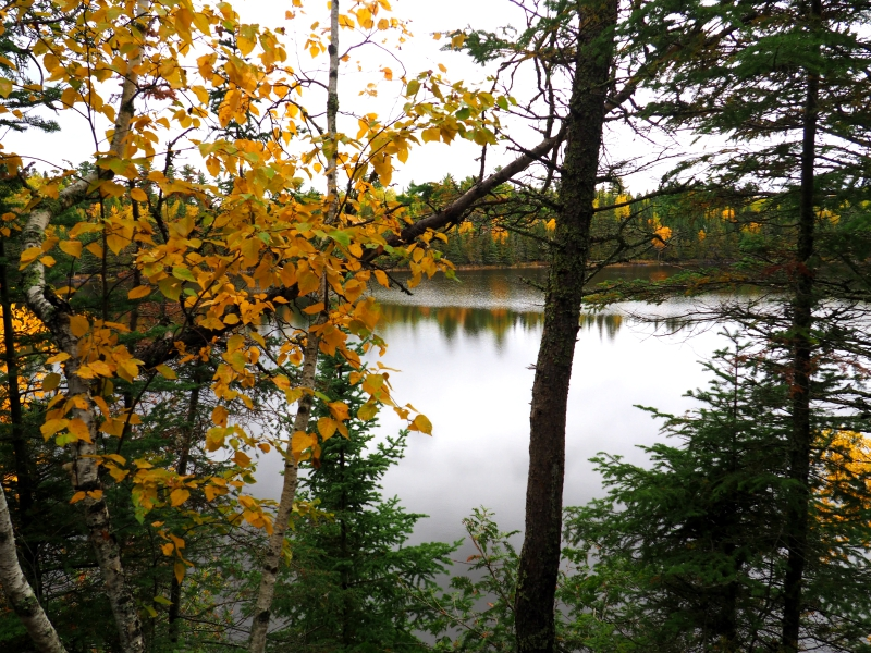 Hunt Lake Trail Whiteshell Manitoba