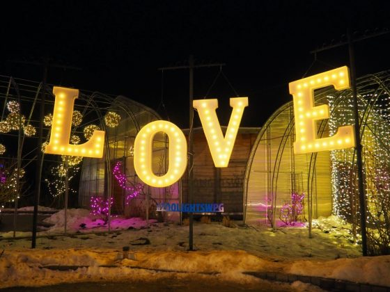 Zoo Lights Winnipeg Love